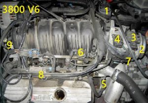 GM 3800 (3.8L) engine sensor location picture.